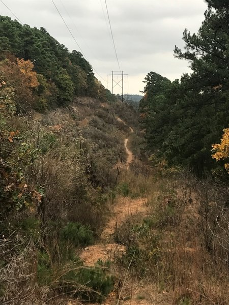 Under the powerlines above Connor Park, one of my favorite parts of this trail.