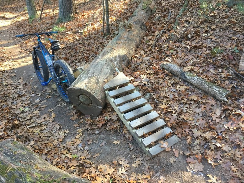 1 of the larger downed tree ramps...they are well constructed and flow very well...hit them all!