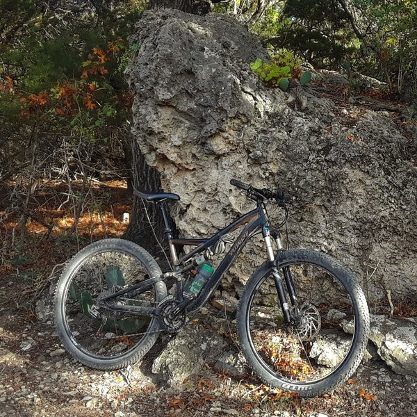 The Stumpy resting up against a large boulder of cheese grater limestone with prickly pear cacti along the P2P Trail