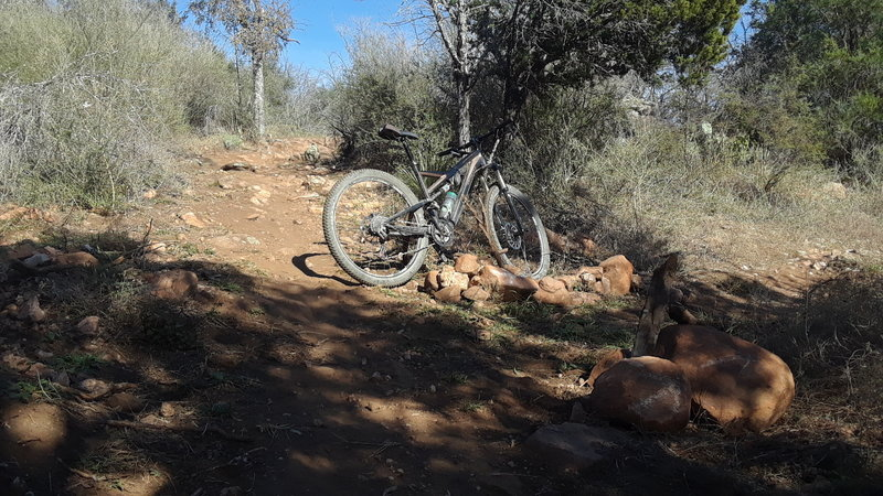 At the bottom of Texas Enduro Cup's Sweetskull, the Race Loop takes a sharp right