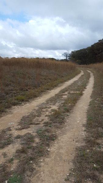 Connects Cibolo Trail to Cibolo Nature Center.