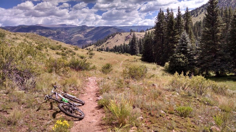 Summer 2015 - Final descent on Deep Creek out of pine forests