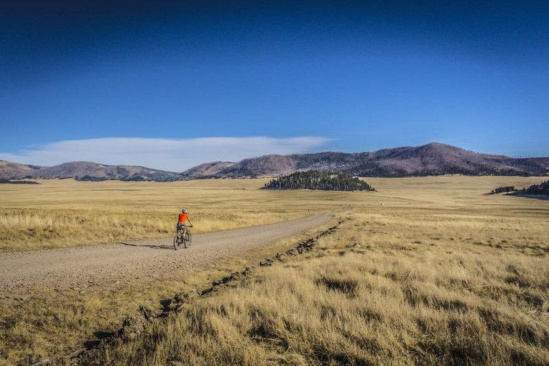 Valles Caldera has wide open spaces - watch for elk