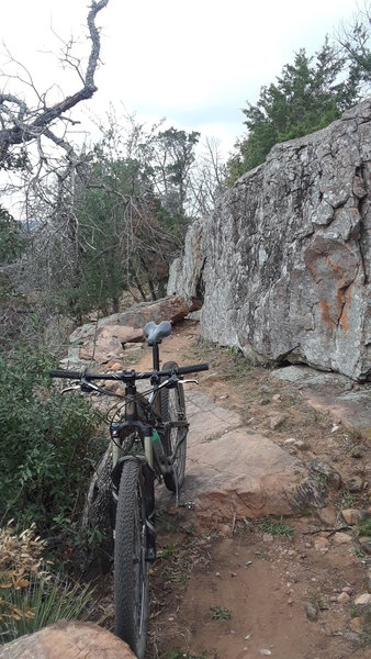 A rocky, ledge and stairstep climb along a section of the Race Loop reroute