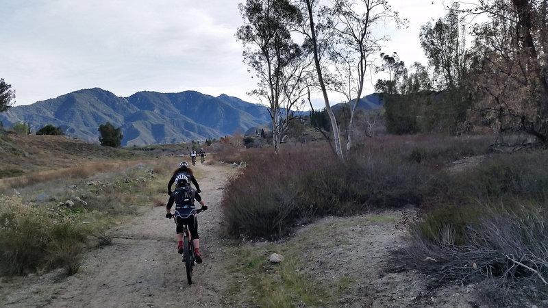 Oak Glen Wash Trail
