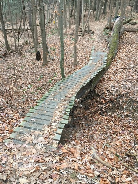 1 of many bridges on Galloping Gert and this side of the park.  They all have expanded metal sheets on them for traction over Trex decking.