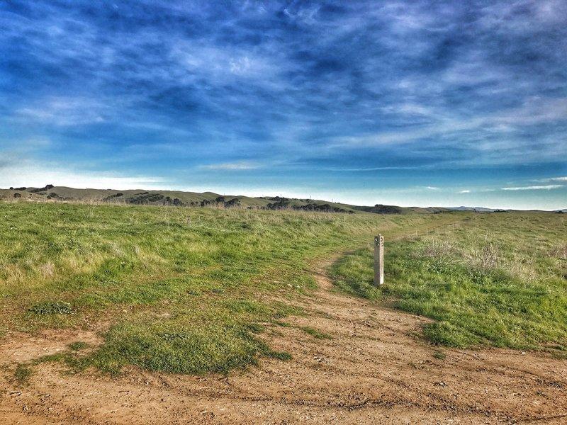 Looking at Gossip Rock Trail Loop.