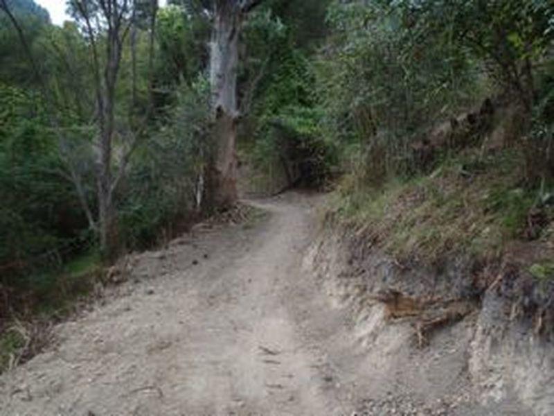 Escalator Trail