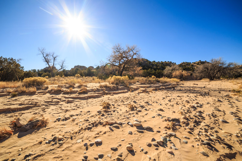 December 10, 2017 ~ the driest start to Winter in New Mexico since 2001 ~ rideable natural snow is nonexistent in the mountains, conditions are primo for mountain biking across the region. Lemitas Trail