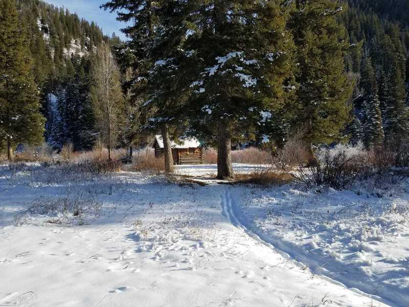 Survival Cabin at Chicken Springs Junction