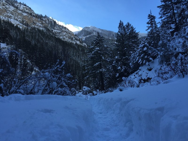 Stay on the trail during the winter months. Up towards the lake it can be belly button deep if you step off the trail!