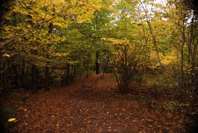 Southern New England Tunkline Trail