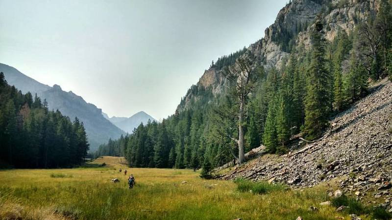 Meadow skipping in Rocky Canyon