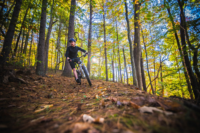 Red Rays Alt trail is a short connector that features several small berms back to back.
