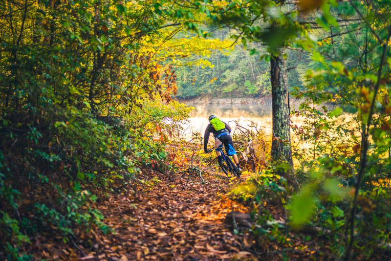 Flowing singletrack along the Golden Shores Trail has great views of Philpott Lake. Ride counter clockwise