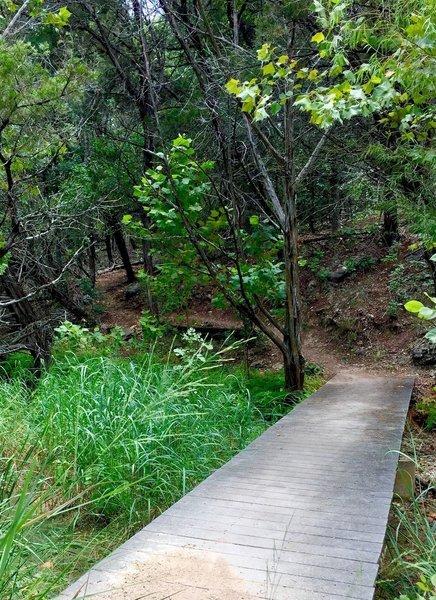 A smooth bridge along the Canyon Trail.
