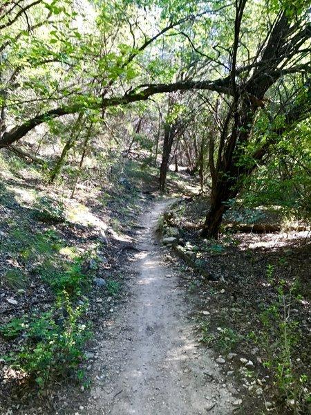 Palos Verdes Trail heading towards Hurst Hollow.