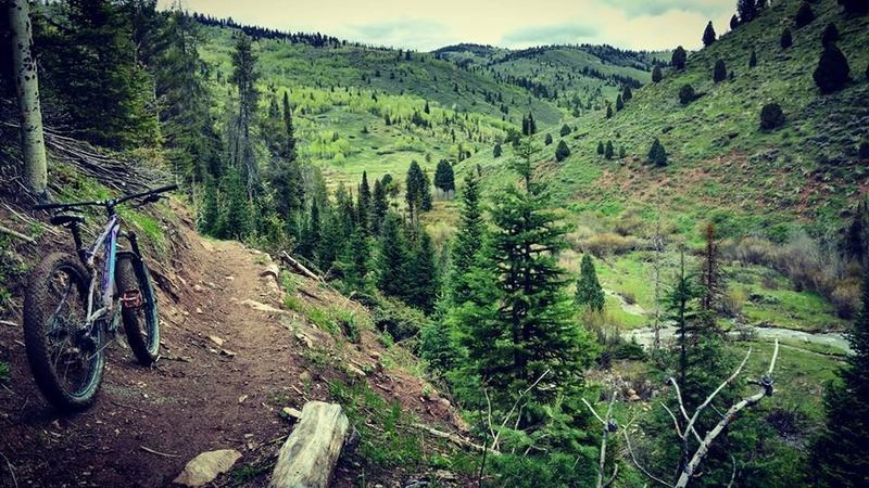 Good sections of bench-cut trail along the South Fork of Tincup Creek