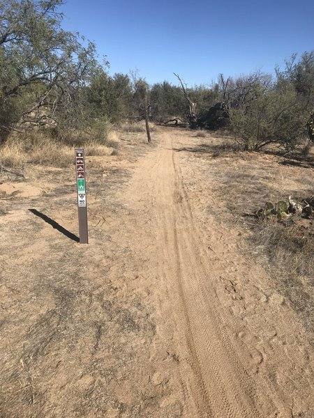 Nice level trail closed to ATVs and other motorized vehicles