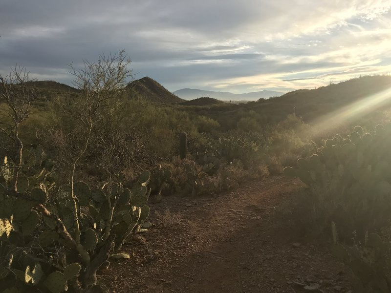 Sunset on the trail.