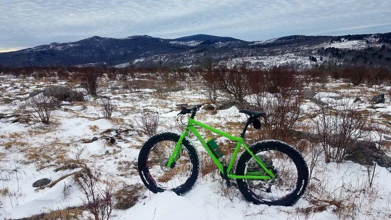 Fat Bike territory.