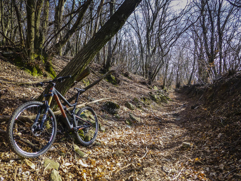 The more difficult singletrack section on the way to Orino is often filled with leaf litter