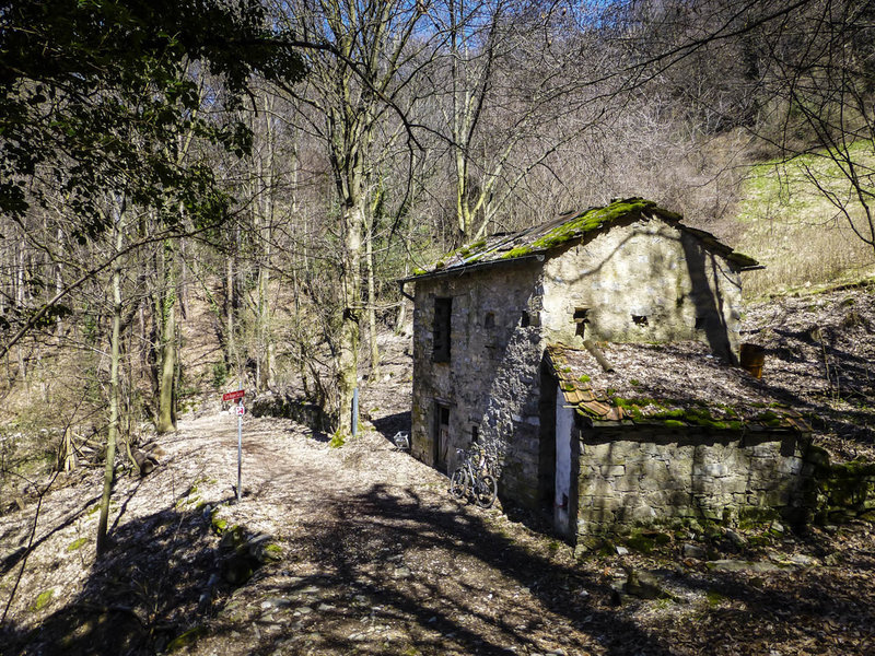 Abandoned villa in the Forestale di Lattecaldo (Forest of Hot Milk)