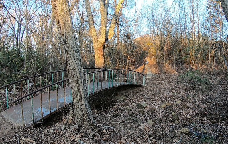 Wooden skinny and bridge on Cross Country Trail.