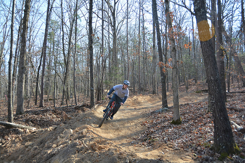 One of 7 new dirt berms on advanced trail.