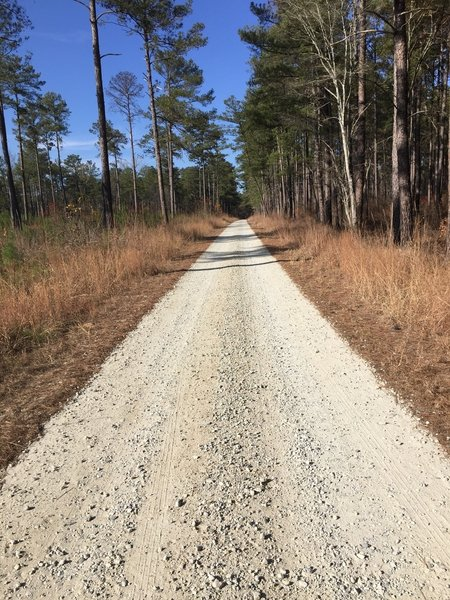 Trail 4 (green) is a gravel connector