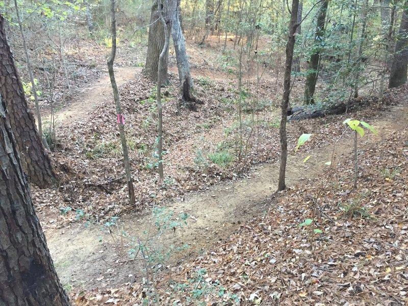 Upper ravine section Orange Loop