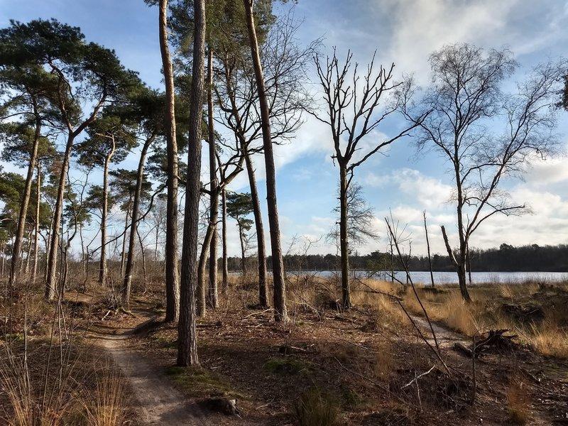 MTB trail around the small lake Hazenputten.