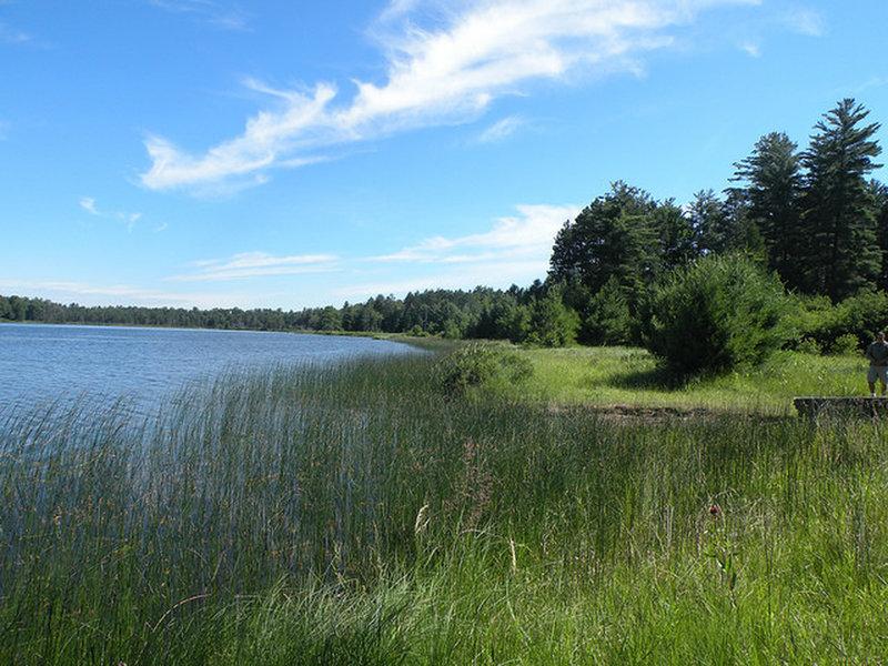 Wakeley Lake.