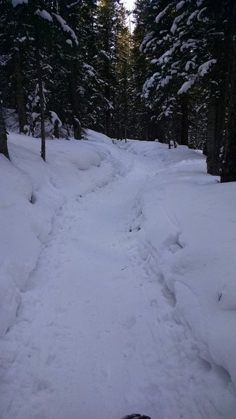 A snow-packed Turk's Trail.