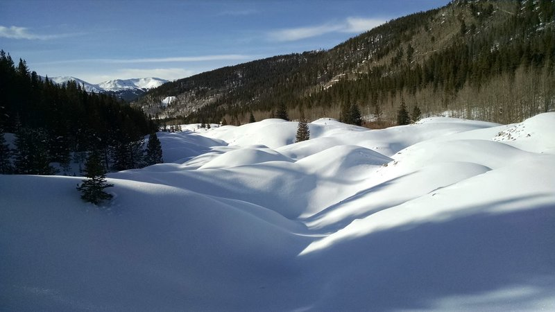 Tailings from Reiling Dredge viewed from the trail in the winter.