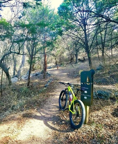 Hamilton Greenbelt Hurst Hollow Trail...so much fun!