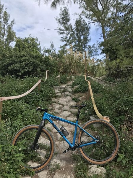 """Probably the most difficult part of the whole park. My hardtail and rigid fork say """"MEH""""."""