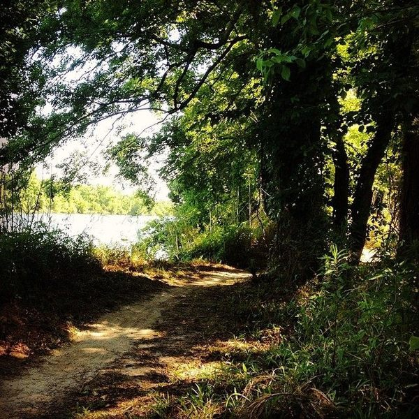 The trail is beautiful in the summer.