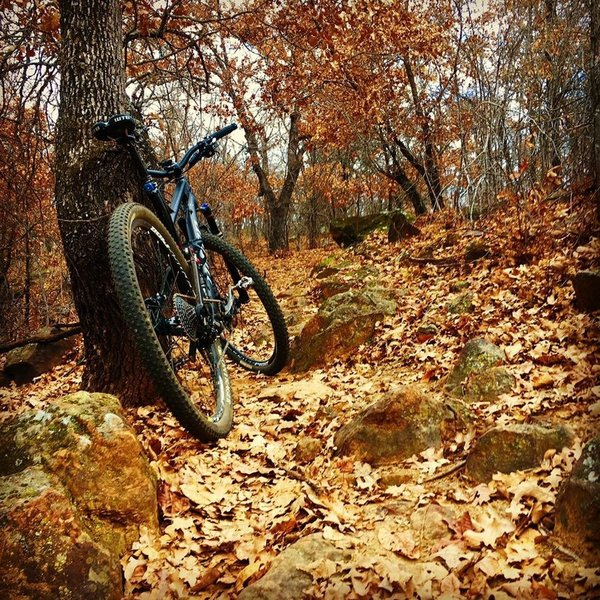 Fall in North Texas (unknown location on trail).