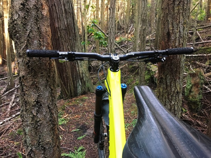 Watch for the tree-pinches. This one was narrower than my brake levers.
