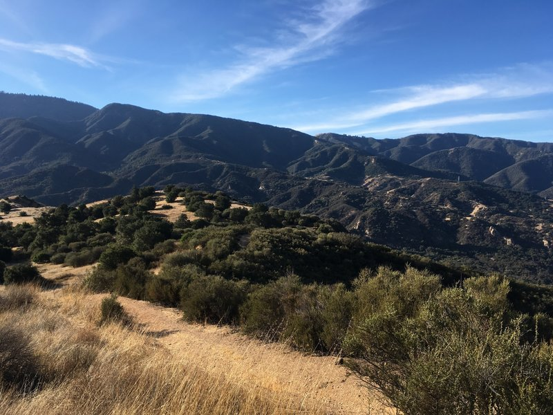 A little over half way on the connector, looking south towards Santa Ynez River, Arroyo Burro North and Rancho Oso, 3 really fun sections remaining!