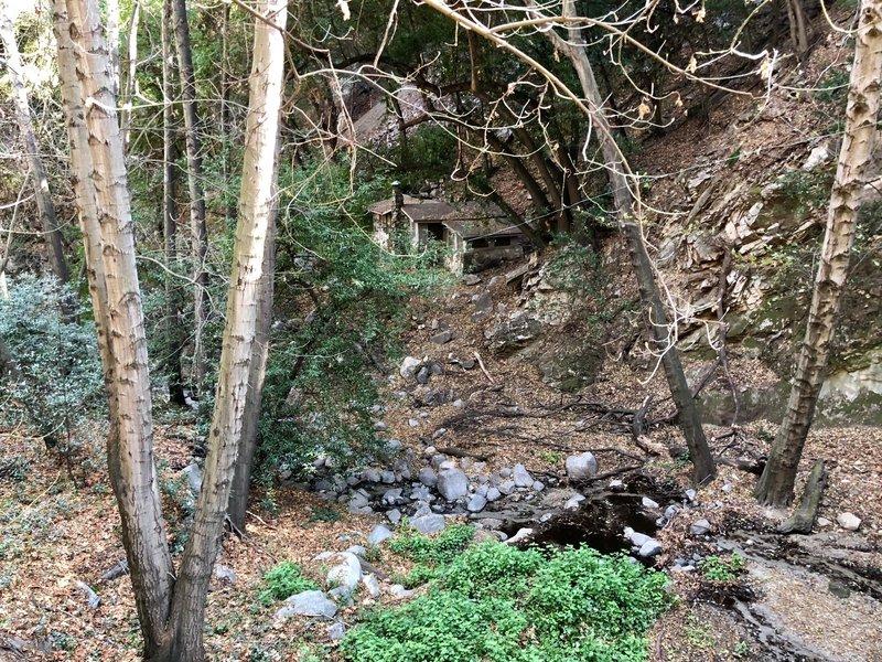 Winter Creek Loop.