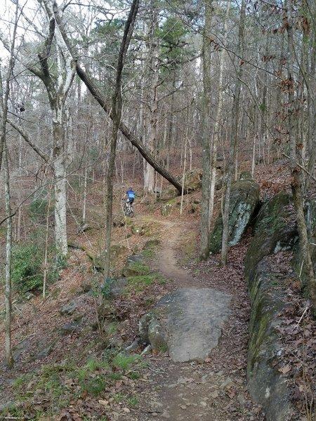 Splendid benchcut trail.