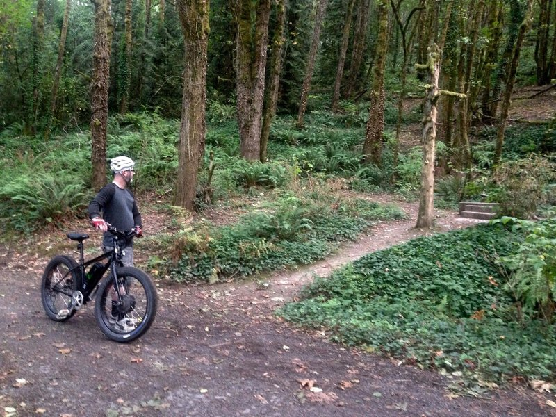 A bicyclist stops to check out the site remains of the former homestead on the Erikson Trail. Bill Cunningham Photo,