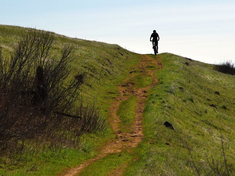 Biking Atwood Road