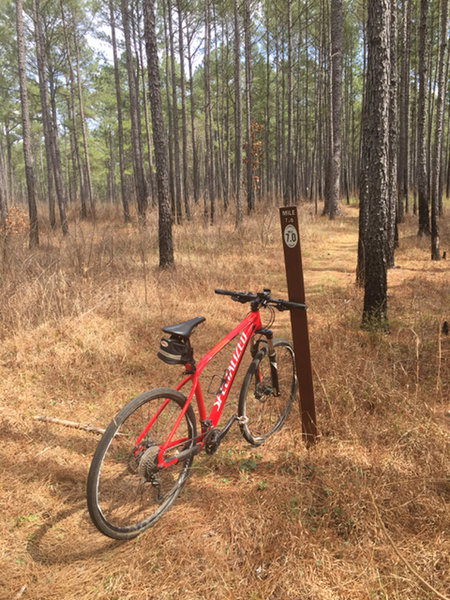 Clear mile markers. Mile 7 is the end of the trail - either turn around or take a shortcut back along the gravel forest service road.
