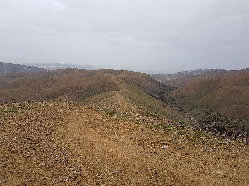 Murcielago going north