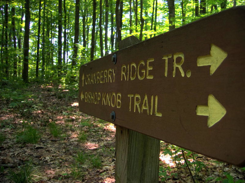 Trail Sign.