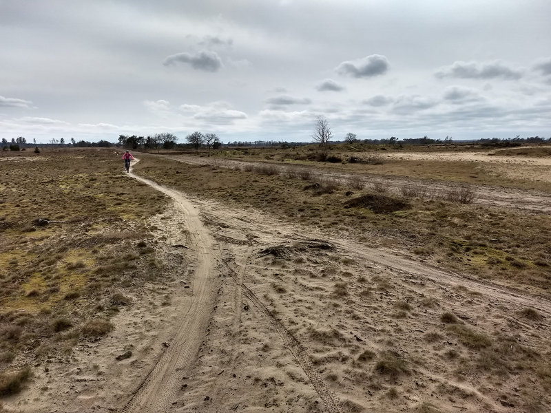 Trail over the moorland of Lierop.