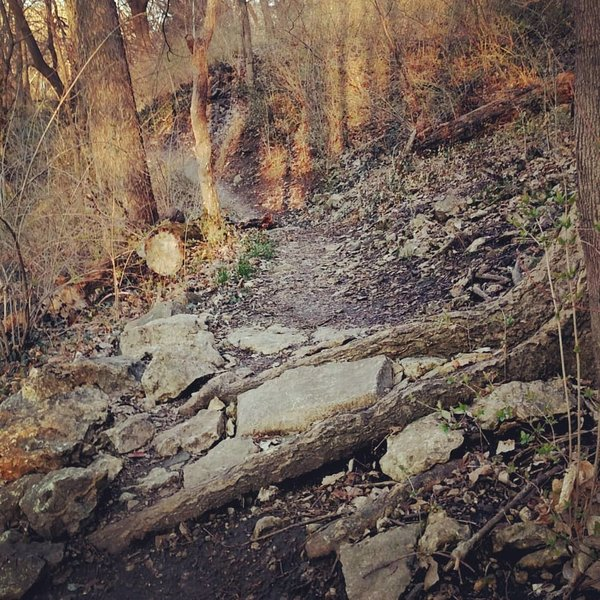 Climbing up Devil's Dip, eastbound.